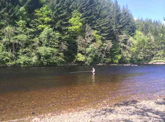 Catching Salmon In Scotland
