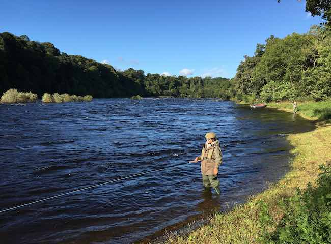 Salmon River Perfection