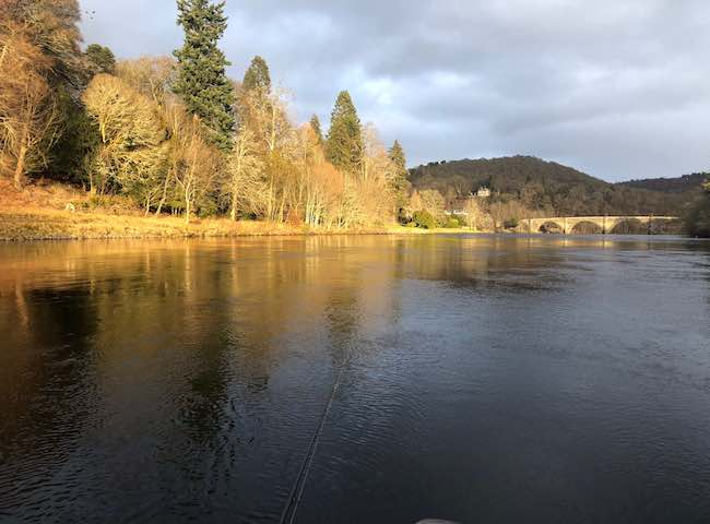 River Tay Guided Salmon Fishing