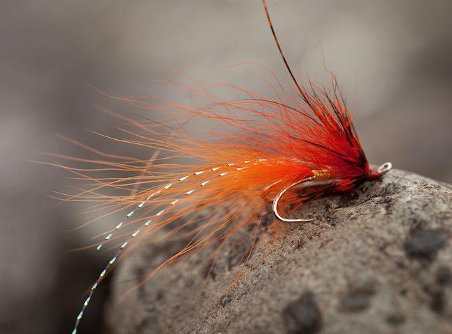Scottish Fly Fishing Experts