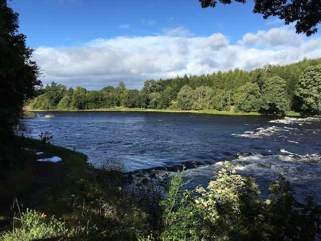 The sheer size and width of Scotland's largest salmon river is impressive in its lower reaches as you can clearly see here. The River Tay is indeed a fantastic Scottish salmon river and attracts thousands of dedicated salmon fishers each year to its beautiful riverbanks.