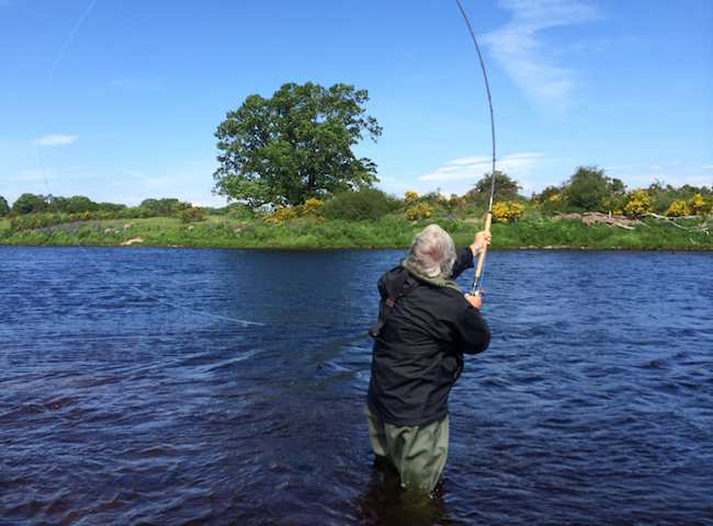There's nothing that's more tactically astute than being able to deliver a long distance salmon fly out across the river without requiring a back cast especially when there's no room behind you for a traditional overhead cast. The Speycast is a most effective method for covering all salmon water with.