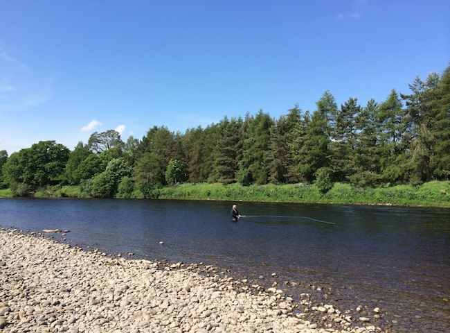 Fly Fishing The Scottish Salmon Rivers