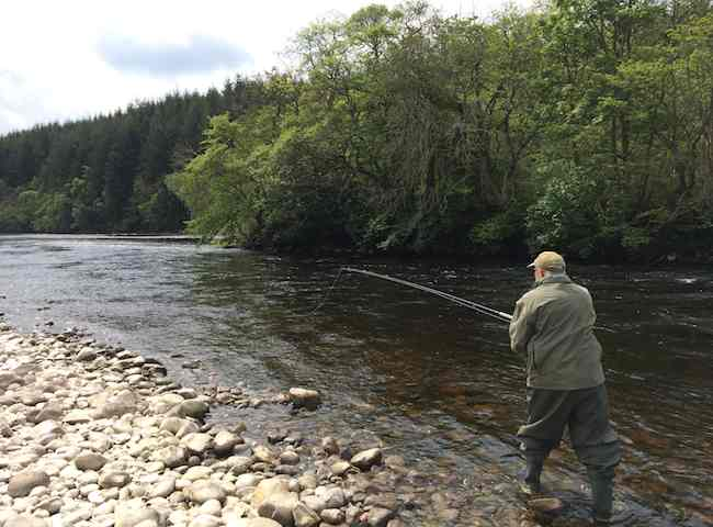Learn The Art Of Salmon Fishing
