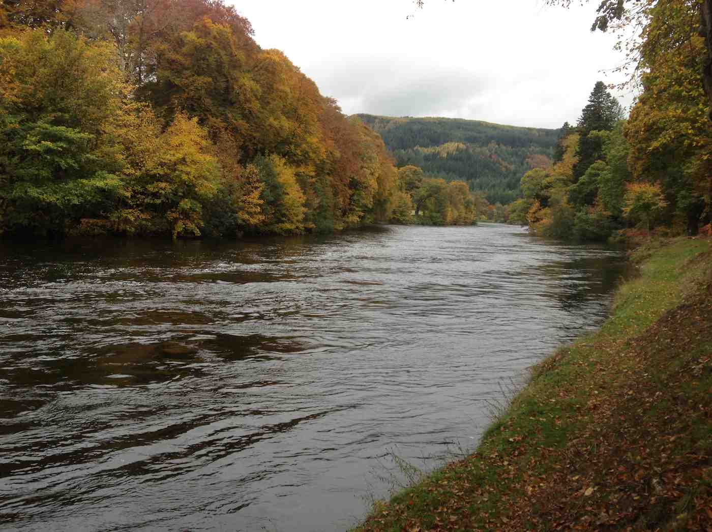 The fishing season ends on 15 October on the Tay