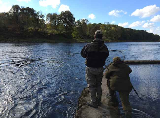 Salmon Trips To Scotland