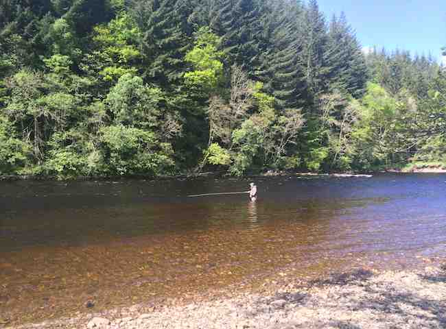 Fish For Salmon On The River Tay