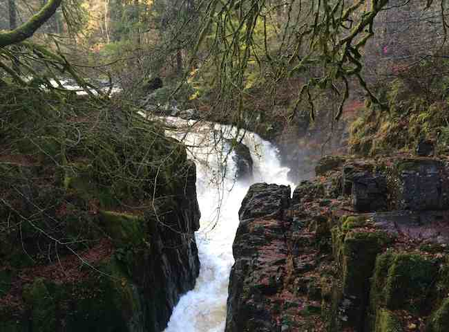 The Hermitage Waterfall At Dunkeld