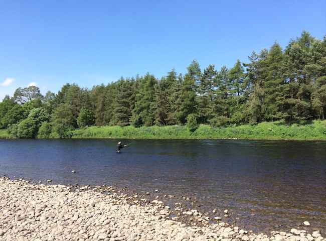 Fishing The Scottish Rivers