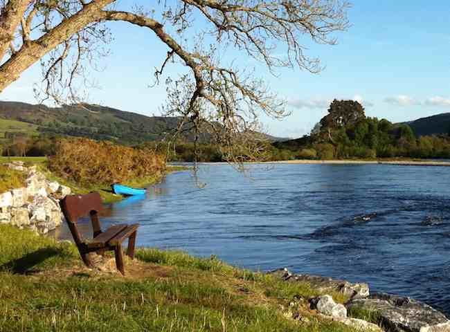 Spring Salmon Fishing Trips
