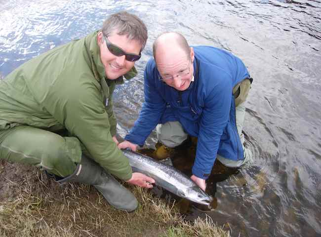 Releasing Your Atlantic Salmon