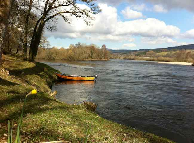 River Tay Fishing Holidays
