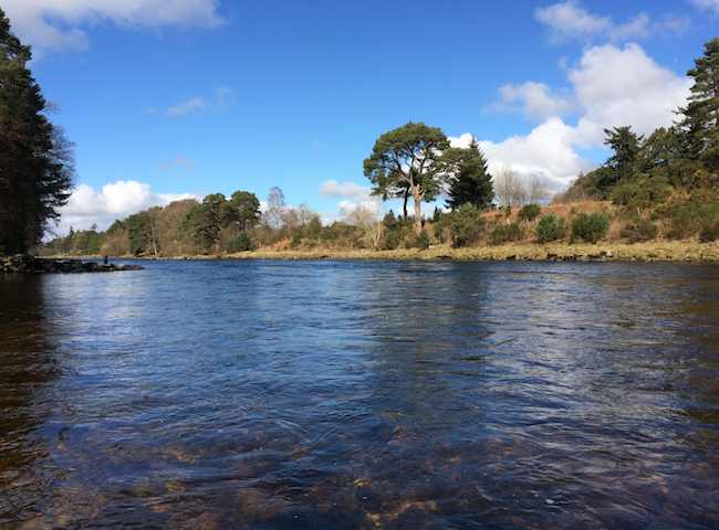 Salmon Fishing Trips In The UK