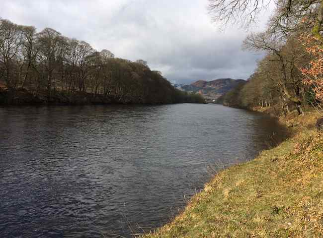 Take A Scottish Salmon Fishing Vacation