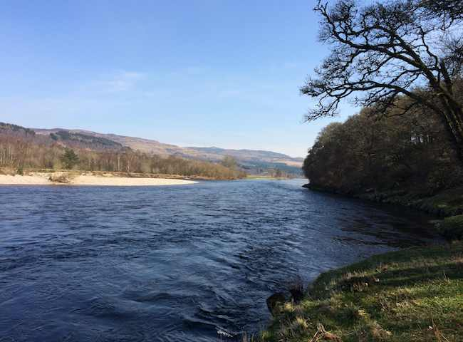 Scottish Rivers In Spring