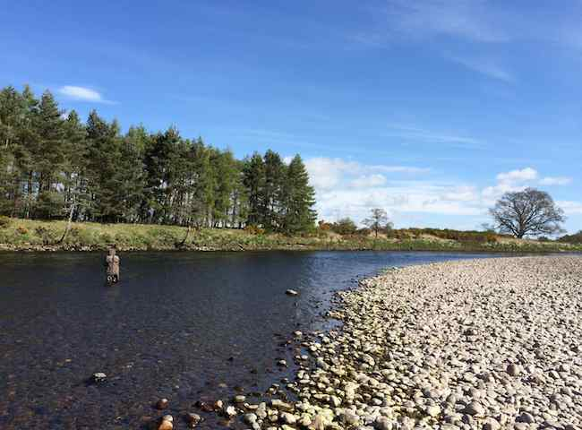 Fishing The River Tay In Perthshire