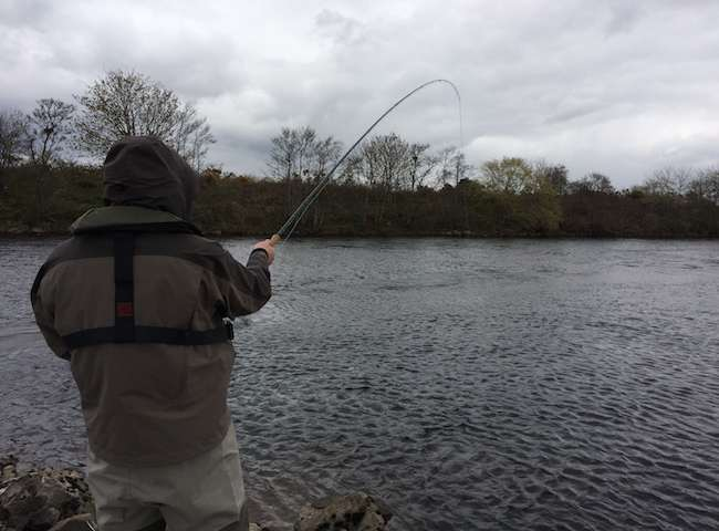 Catch A Salmon On The River Tay