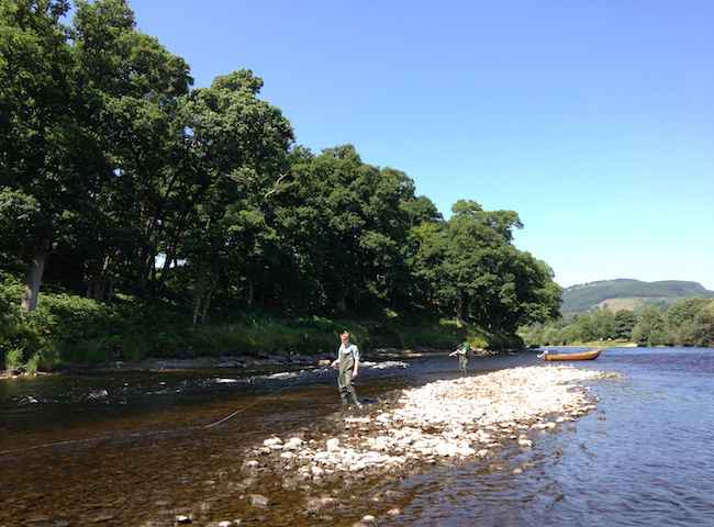 Catch Salmon On Scottish Rivers
