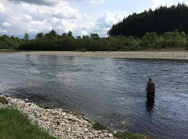 River Tummel Fishing Trips