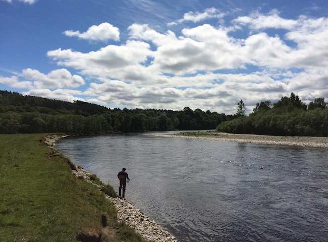 Salmon Fishing Trips In Perthshire