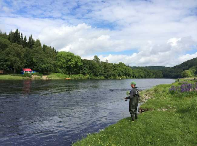 Hire A Proven Salmon Guide