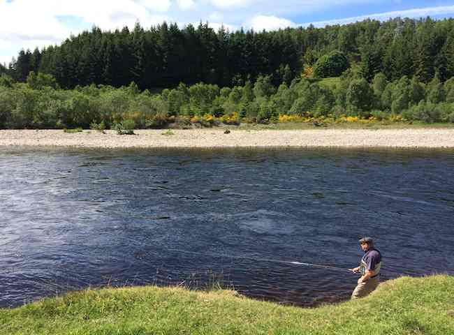 Enjoy a Scottish Salmon River