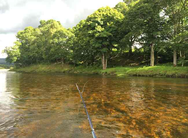 Scotland Fishing Trips