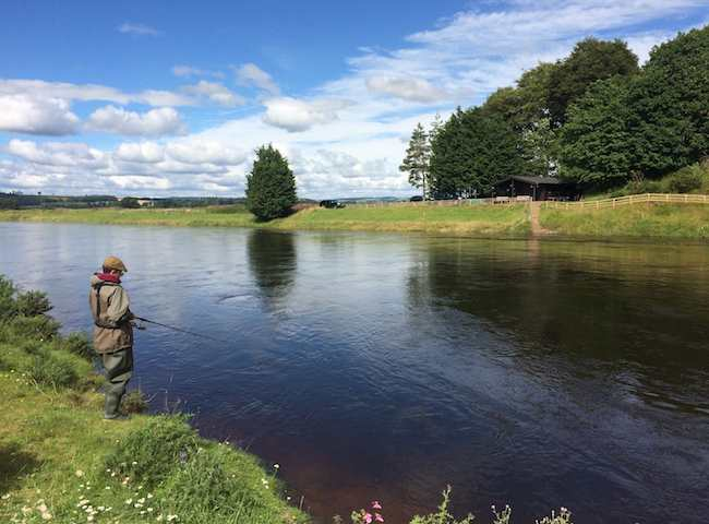 The Scottish Salmon River