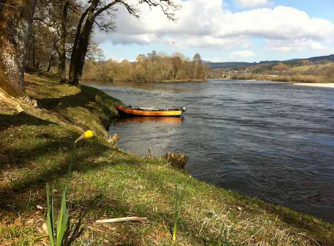 Catch A Spring Salmon On The River Tay