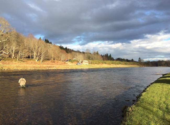 River Tay Holidays