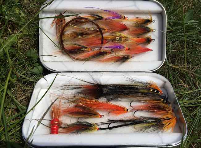 Salmon Fly Selection