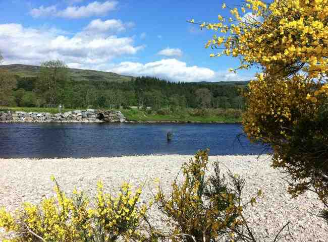 Perfect Scottish Salmon Pools