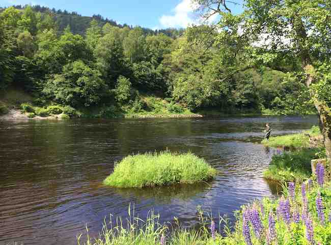 The Perfect River Tay Riverbanks