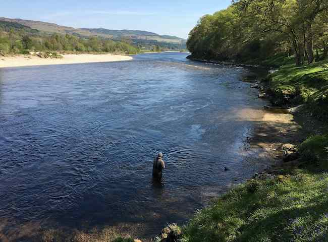 Catch A River Tay Salmon