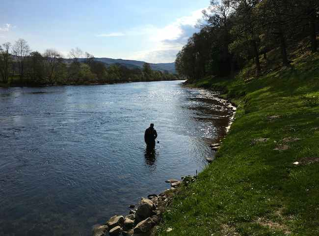 Scottish Salmon Fishing advice