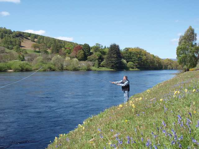 Fishing The Tay In May