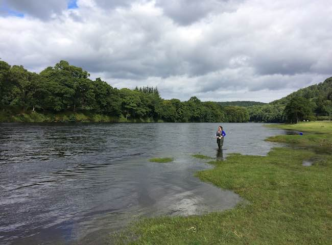 River Tay Salmon Fishing Trips
