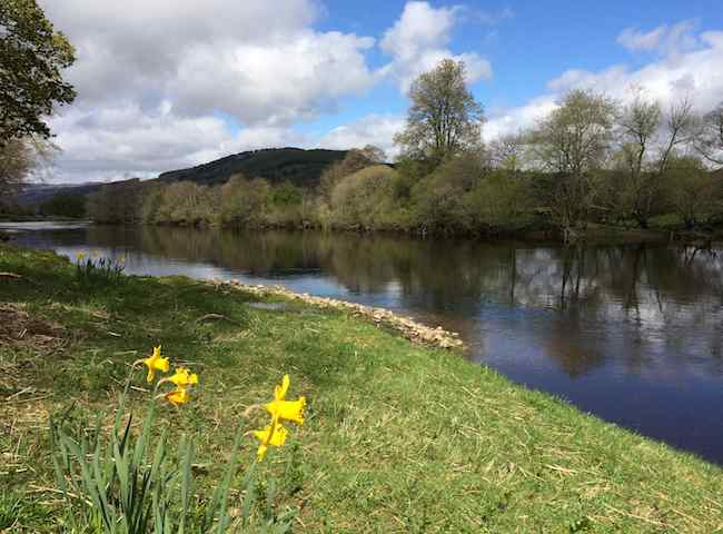 Salmon Fishing On Scottish Rivers