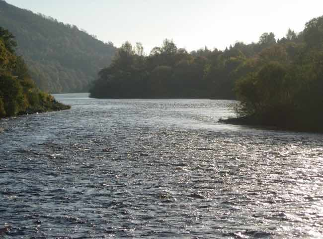 Salmon Fishing Near Dunkeld