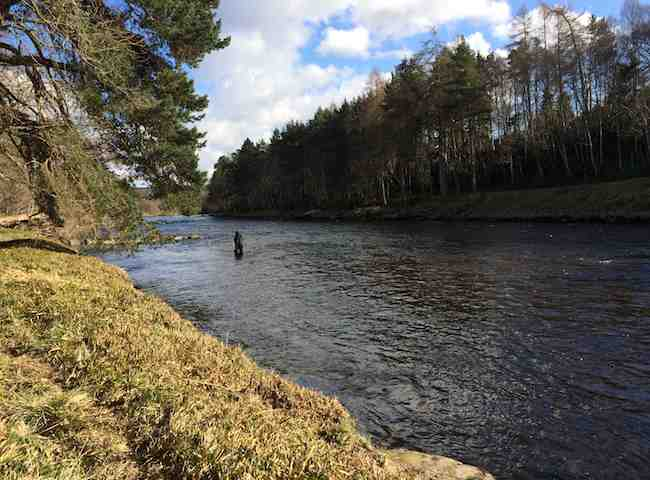 Catching River Dee Salmon