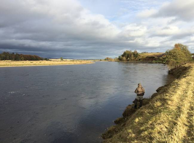 Fishing Salmon In Scotland