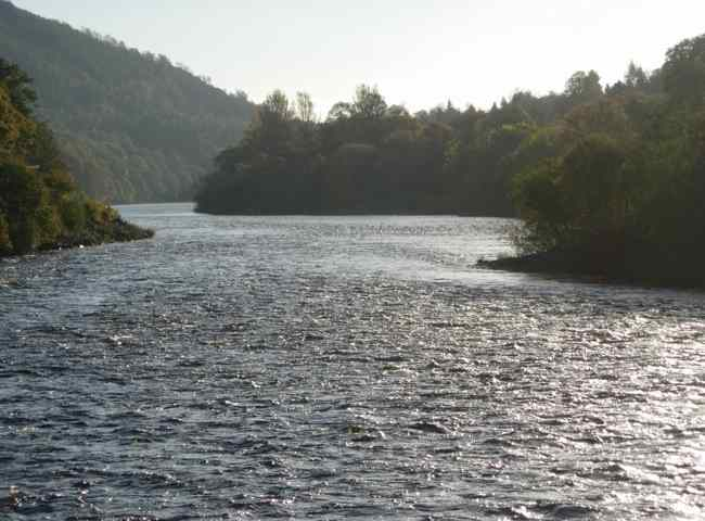 River Tay Fishing