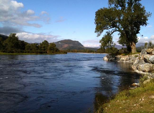 Lower Kinnaird Salmon Fishing