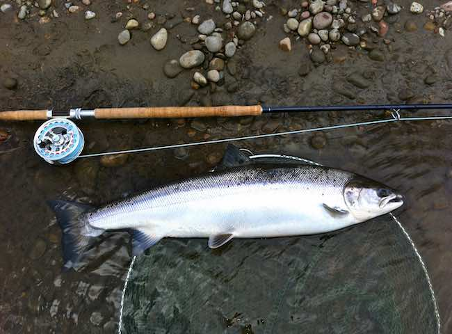Salmon Fly Fishing