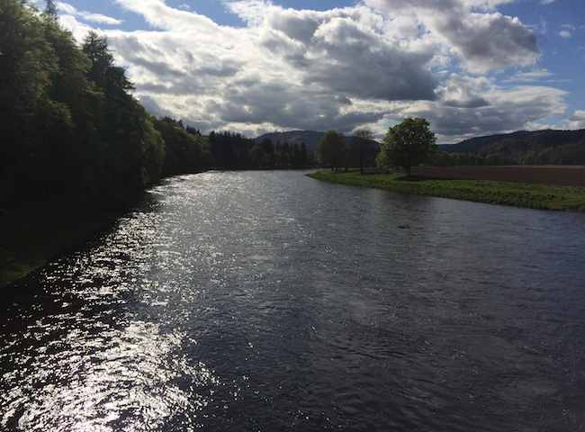 The River Tay's Glendelvine Beat