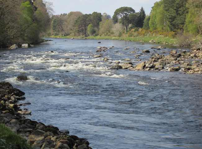 Booking River Dee Salmon Fishing