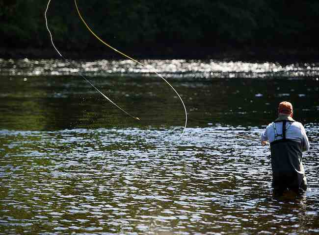 Salmon Fishing The River Tay