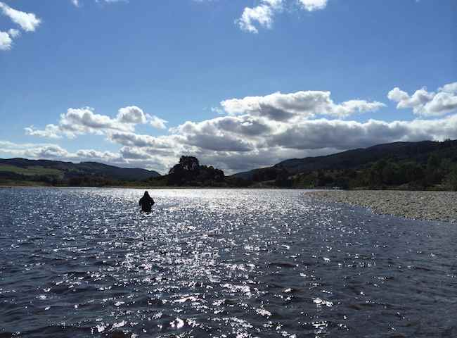 Of all the big Scottish salmon rivers the River Tay is the most reliable Scottish river for good fishable water levels and fishing access. The Tay is also located fairly close to the major Scottish hubs of Edinburgh & Glasgow.