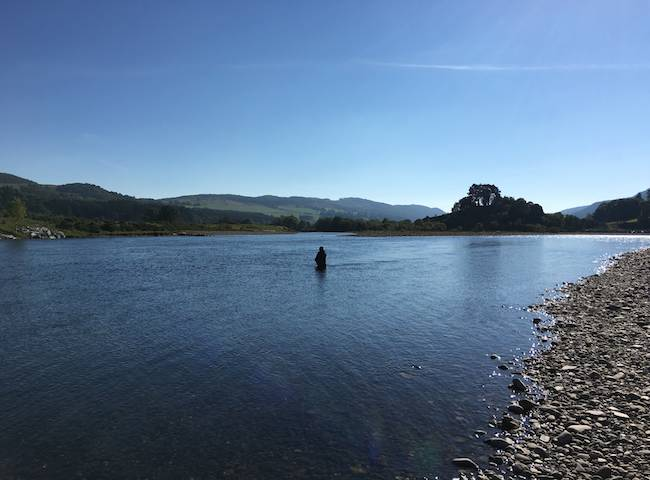 There's nothing better than wading quietly into a salmon pool with your fly rod on Scotland's famous River Tay knowing fine well that salmon are present and well within casting range.