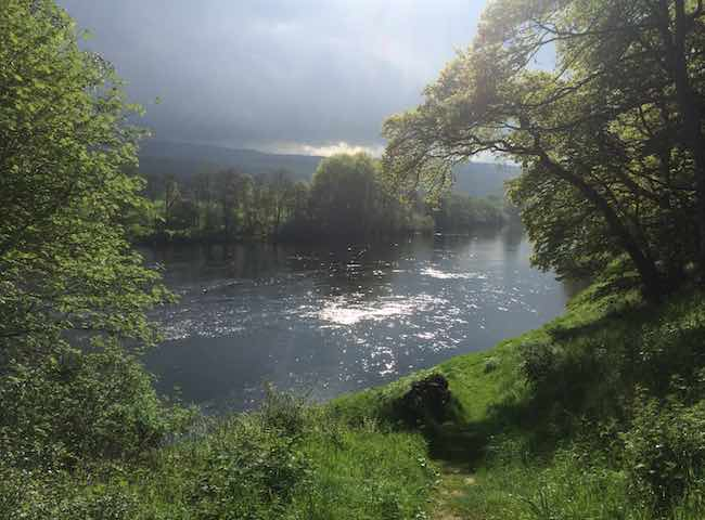 Look at this for the most perfect shot of natural salmon river brilliance. Put yourself in the picture and feel the energy of the mighty River Tay and with a bit of luck and the right guidance feel the buzz from catching Scotland's most iconic gamefish.